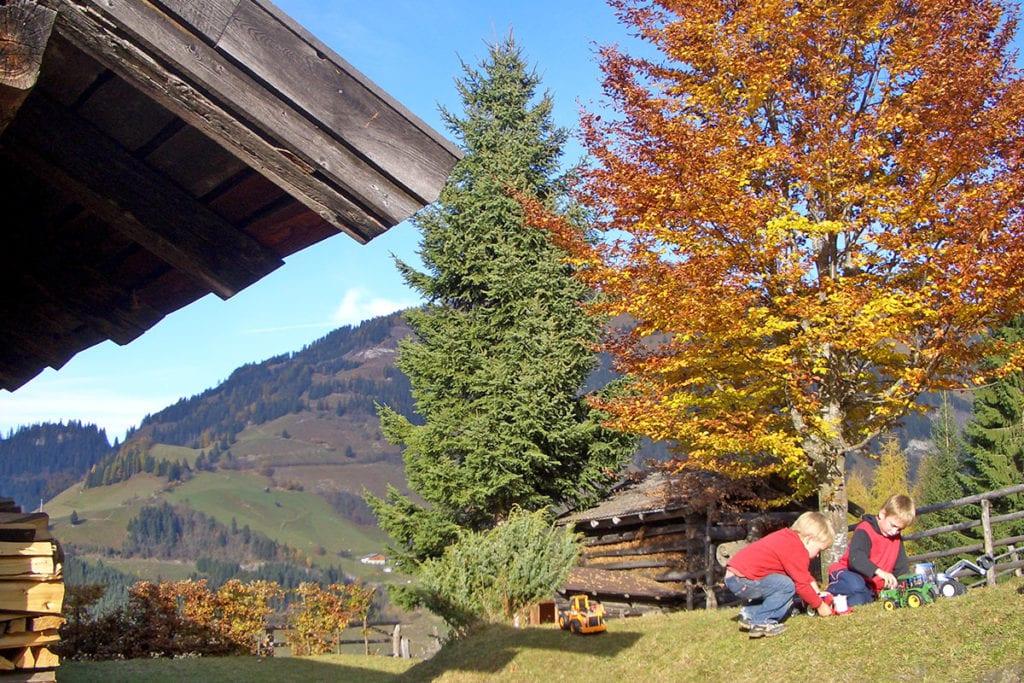 Hofeigene Alm - Wandlehenhof im Großarltal
