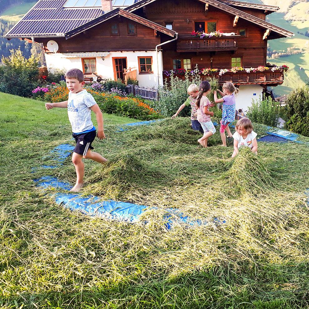 Heuarbeit - Urlaub am Bauernhof im Großarltal