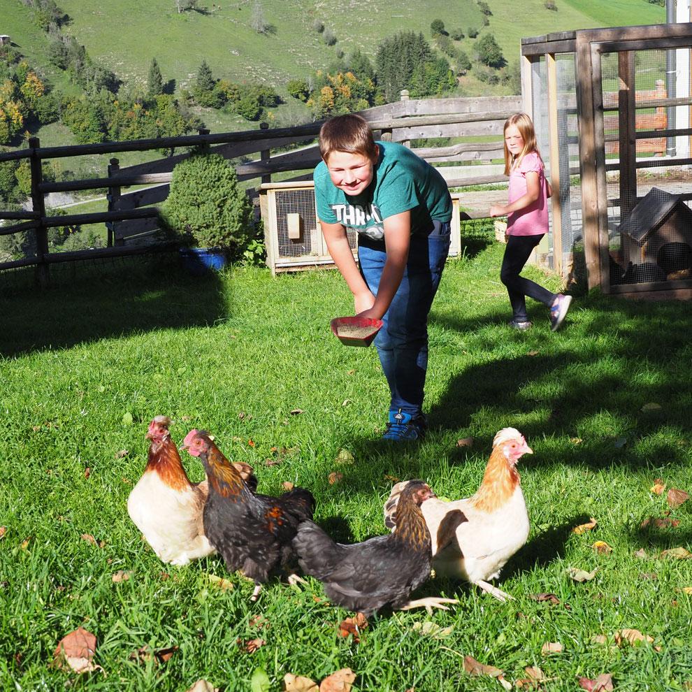 Tiere - Urlaub am Bauernhof im Großarltal